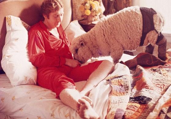Orge con animali – Le denunce dell'Aidaa