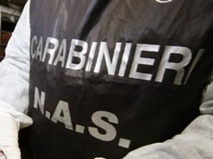 Bologna, i Nas sequestrano 20mila articoli natalizi cinesi in 30 negozi