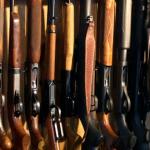 Liguria - Furto di fucili a Mezzanego
