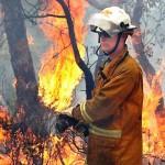 Incendio boschivo nello Spezzino
