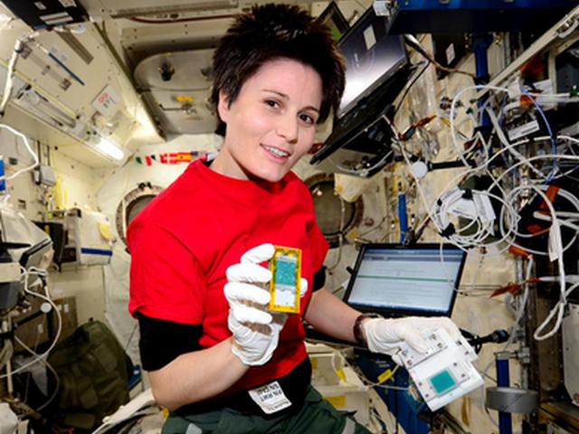 Spazio – Moscerini della frutta sulla Stazione Spaziale Internazionale