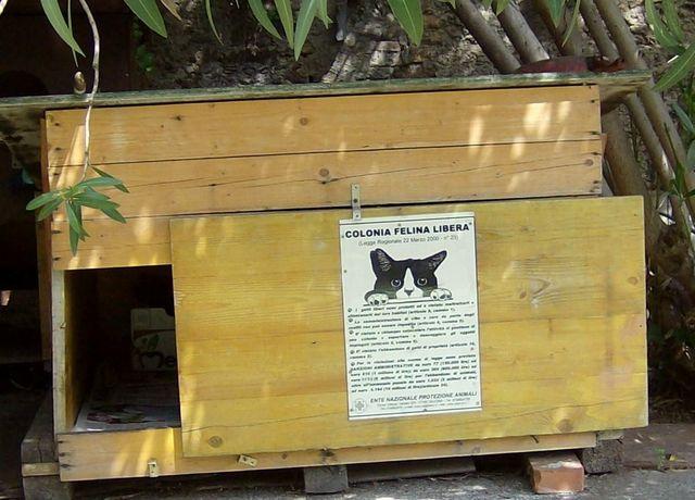 Caccia ai cani che uccidono i gatti ad Albenga