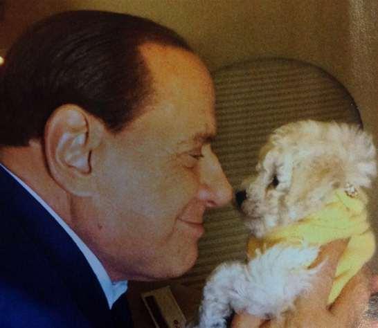 Gossip – Berlusconi non sopporta più Dudù e gli animali di Francesca Pascale?