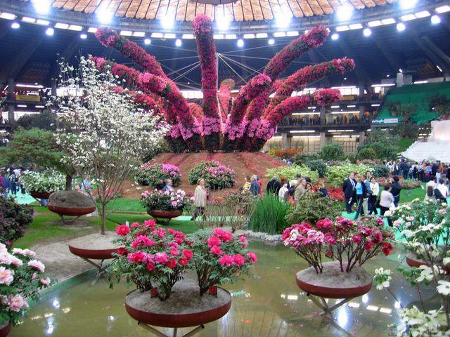 Firenze di Renzi scippa a Genova l'anteprima Euroflora per l'Expò 2015
