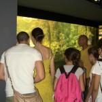 turisti acquario 2