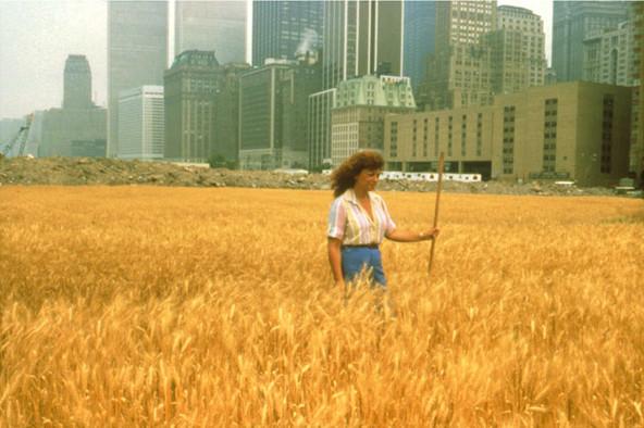 MiArt 2015 regala a Milano campo di grano di 50.000 mq a Porta Nuova