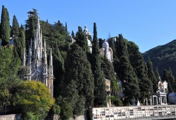 Genova – In cimitero Staglieno morte anche le siepi: uccise da parassita
