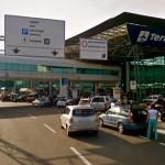 Liguria - Incidente a estri Levante: motociclista investe cinghiale, ferito grave