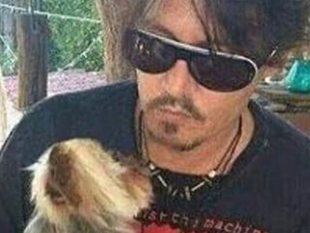 Johnny Depp scappa dall'Australia per salvare due cagnolini