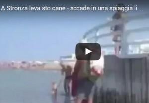 Insultata per il cane al mare