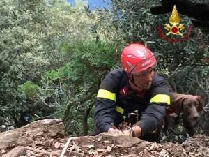 Vigili del fuoco salvano cane e padrone