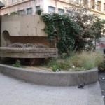 BerioCafè di Genova lancia la Berio Community Garden