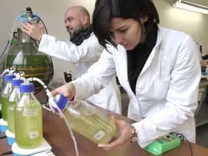 """Cairo, analisi dell'Arpal sull'acqua """"rossa"""" del Rio Ville"""