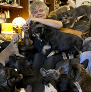 Lascia la casa in eredità ai 41 cani