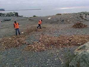 Immigrati puliscono spiagge di Voltri