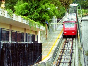 Genova, rubano biciclette da una cantina: un arresto e una denuncia