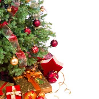 Alberi di Natale che camminano e offrono abbracci in via Sestri