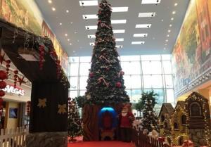 """Nella foto, l'albero di Natale del centro commerciale """"Le Terrazze"""""""
