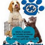 """Albenga, domani la giornata a favore degli animali in difficoltà al """"Centro Fortesan"""""""