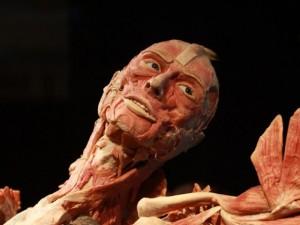 Body Worlds opera-2