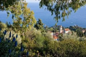 """Nella foto, i giardini """"Carlo Maggia"""" a Capo Mortola (Ventimiglia)"""