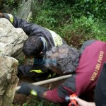 Casarza Ligure – Vigili del fuoco salvano cagnolina bloccata tra le rocce