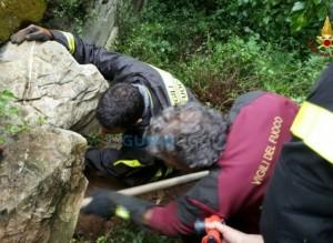 cagnolina salvata dai pompieri a Casarza