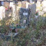 Cimitero di Staglieno – Turisti tra degrado, erba alta e zanzare tigre