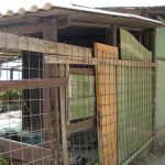 5 Terre – Villaggio abbandonato occupato abusivamente a Corniglia