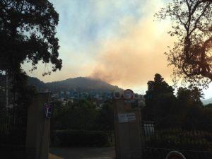 Liguria, continua l'allarme incendi dolosi
