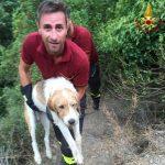 Finale Ligure – Vigili del Fuoco salvano cane intrappolato da lacci per cinghiale