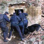 Ndrangheta – Arrestato pericoloso latitante