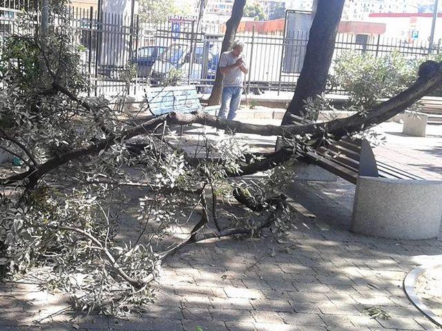 30enne arrestato per riciclaggio alla barriera di Ventimiglia