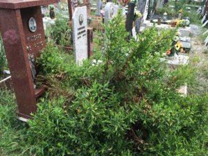 cimitero di Voltri