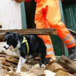 Terremoto – Toti incontra le unità cinofile intervenute sul disastro dalla Liguria