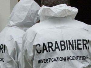 Cinghiali in città a Genova: ora si potranno uccidere