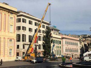 Torna l'albero di Natale in piazza De Ferrari
