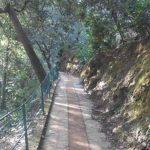 """Portofino, riaperto il """"Sentiero dei Baci"""""""