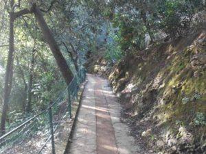Riaperto il Sentiero dei Baci di Portofino