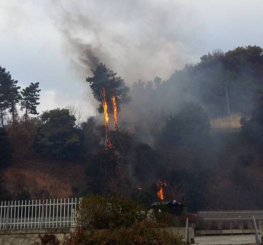 Incendio a Genova - Nuovi roghi a Pegli, Sestri Ponente, Davagna e Neirone