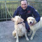 Donega, Polizia soccorre due cani sorpresi a vagare al freddo. Il proprietario ringrazia