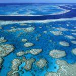 Australia, la barriera corallina sta morendo