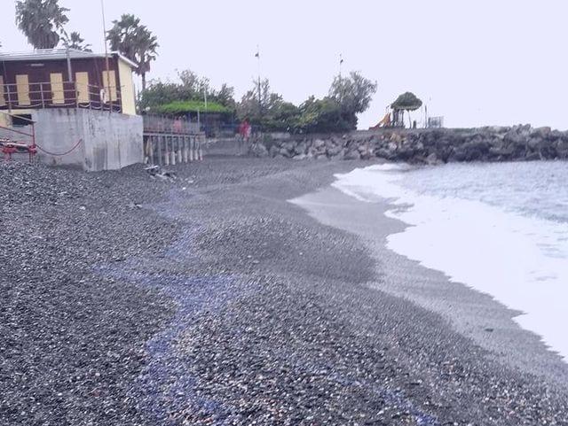Genova Pegli, clochard trovato senza vita sul lungomare. Probabilmente vittima del freddo