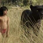 Trovata in India una bambina di 8 anni allevata dalle scimmie
