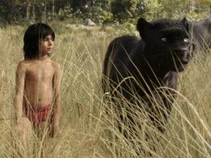Mowgli, il piccolo protagonista del Libro della Giungla, la cui storia sembra quella della bimba indiana