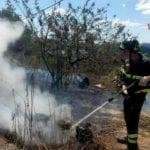 Incendi boschivi a La Spezia, intensa attività dei Vigili del Fuoco