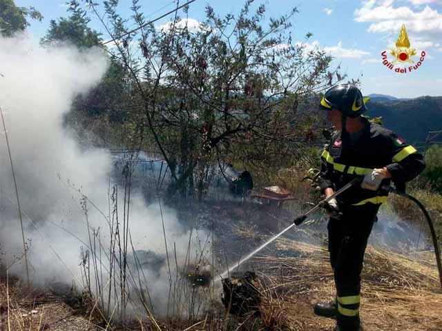 Sterpaglie in fiamme vicino alla Statale 16, intervento dei Vigili del Fuoco