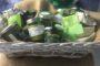 Carico di marijuana in un peschereccio di Bisceglie: arrestati i cinque membri dell'equipaggio