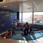Aeroporto a misura di bambino, al Colombo inaugurati nuovi spazi per i più piccoli