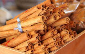 Salute - Cannella bruciagrassi, prezioso alleato contro l'obesità